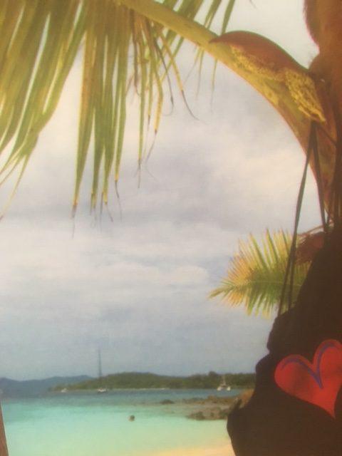 Vicki's Heart hanging at Salomon Beach St. John, USVI