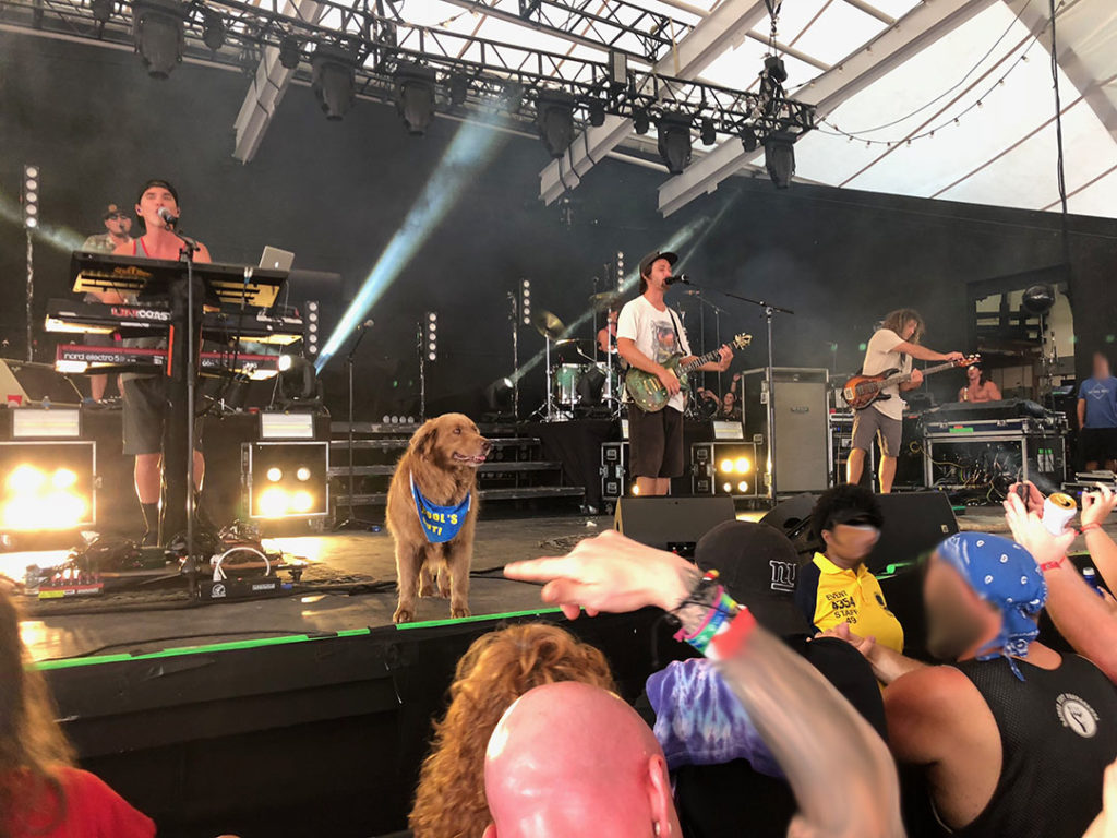 The band Stick Figure with their tour dog Cocoa performing at Pier 6